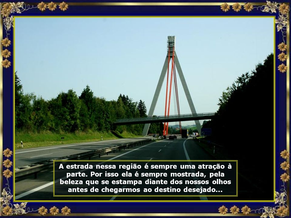 Pontes que servem de mirantes para apreciar toda a beleza desse lugar, são pontos obrigatórios de parada...