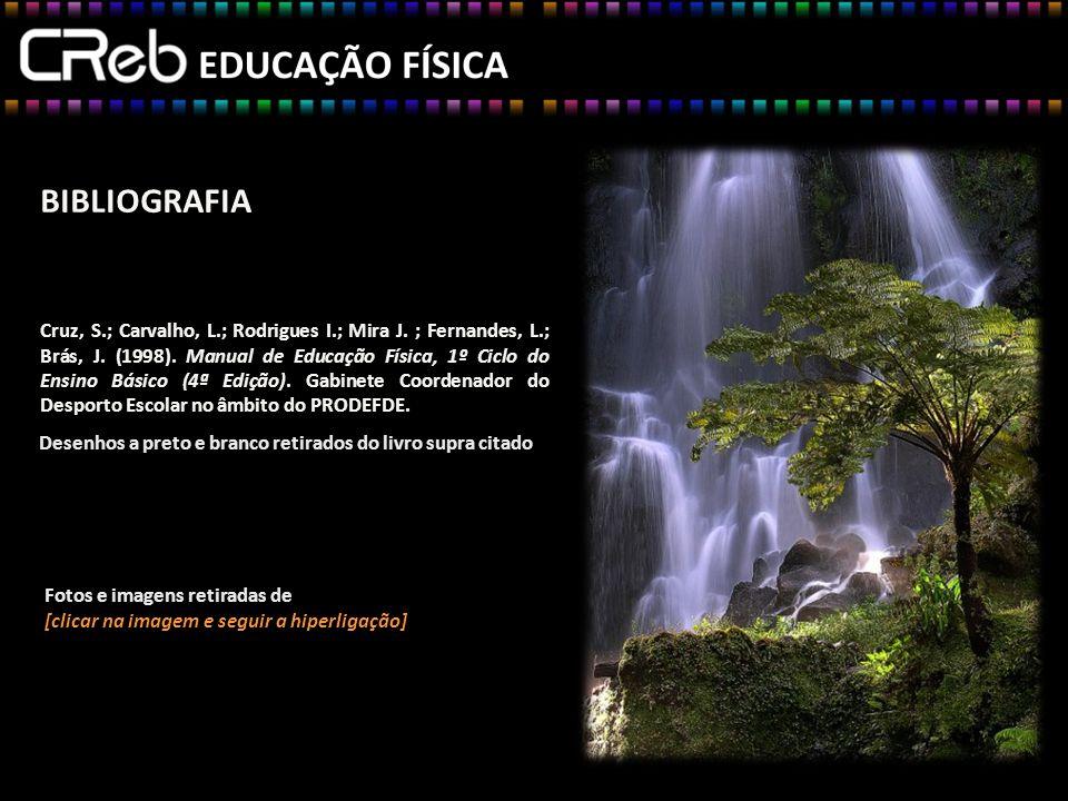 BIBLIOGRAFIA Cruz, S.; Carvalho, L.; Rodrigues I.; Mira J. ; Fernandes, L.; Brás, J. (1998). Manual de Educação Física, 1º Ciclo do Ensino Básico (4ª