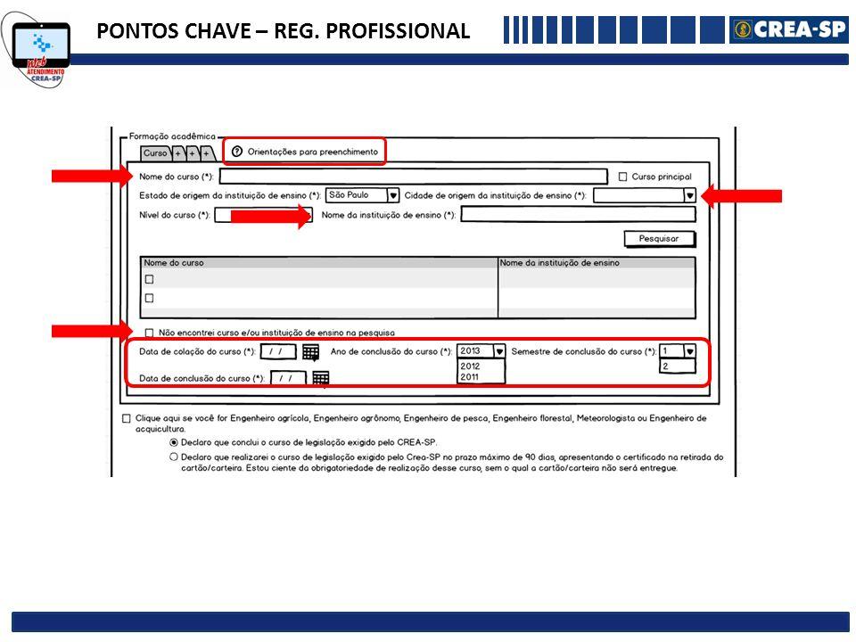 PONTOS CHAVE – REG. PROFISSIONAL