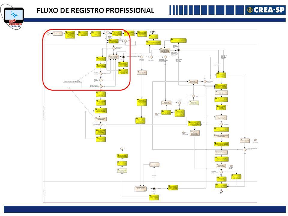 FLUXO DE REGISTRO PROFISSIONAL