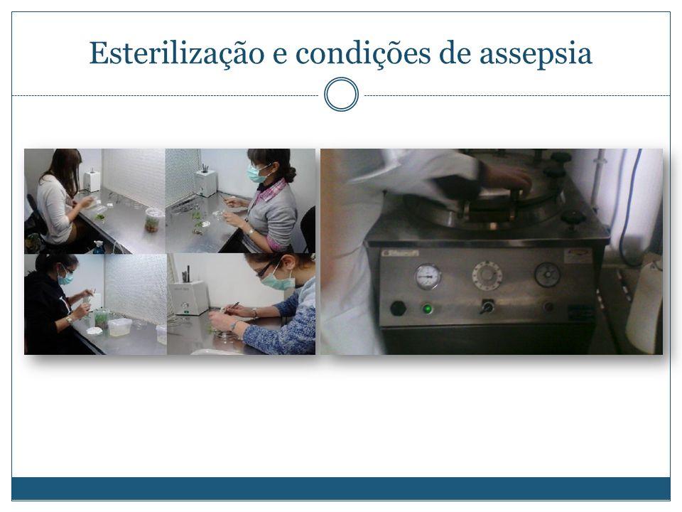 Esterilização e condições de assepsia