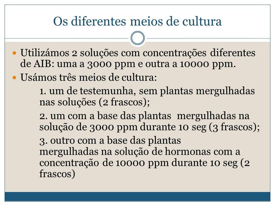Os diferentes meios de cultura Utilizámos 2 soluções com concentrações diferentes de AIB: uma a 3000 ppm e outra a 10000 ppm. Usámos três meios de cul