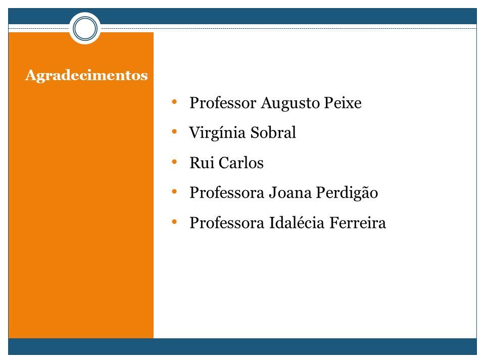 Agradecimentos Professor Augusto Peixe Virgínia Sobral Rui Carlos Professora Joana Perdigão Professora Idalécia Ferreira