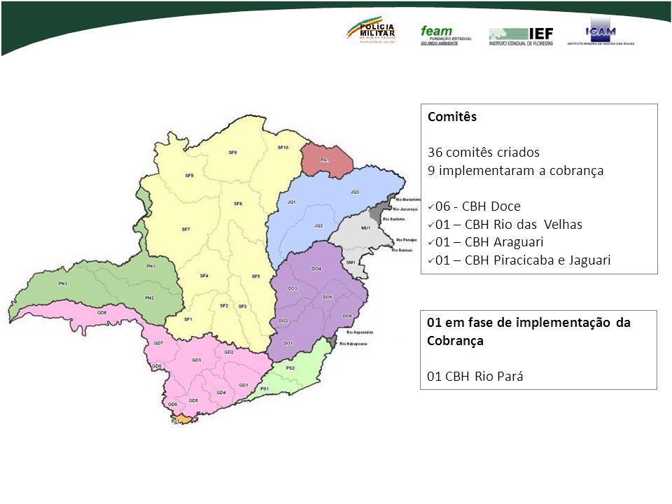 Comitês Estaduais no Brasil Comitês 36 comitês criados 9 implementaram a cobrança 06 - CBH Doce 01 – CBH Rio das Velhas 01 – CBH Araguari 01 – CBH Pir