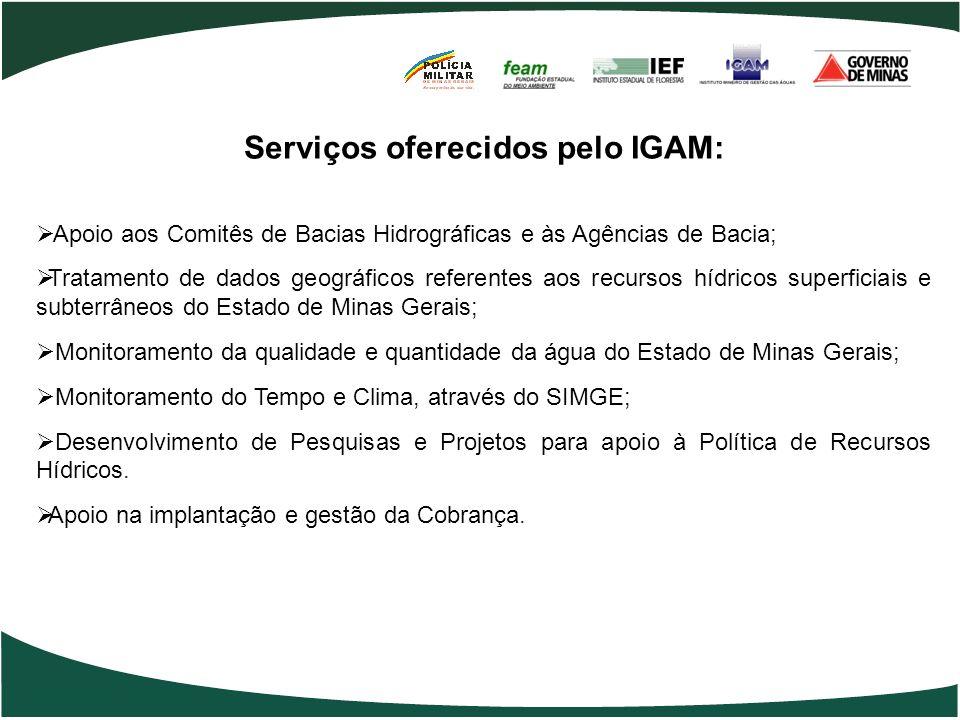 Serviços oferecidos pelo IGAM: Apoio aos Comitês de Bacias Hidrográficas e às Agências de Bacia; Tratamento de dados geográficos referentes aos recurs