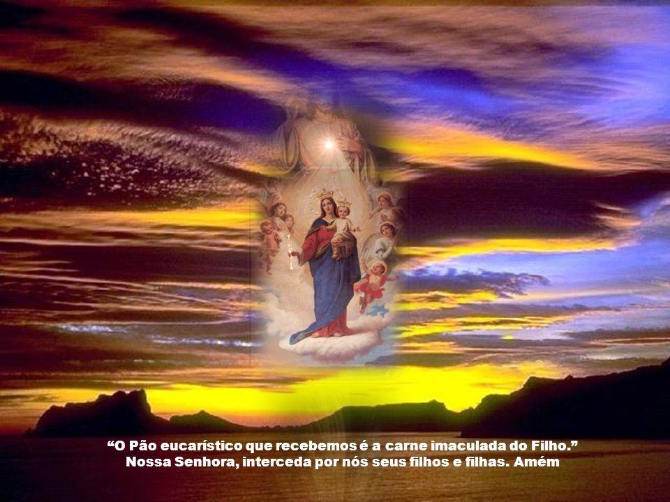 Nós temos no altar o Coração verdadeiro de Jesus no seu corpo vivo: resta-nos adorá-lo, amá-lo e desagravá-lo de tantos pecados que se cometem contra