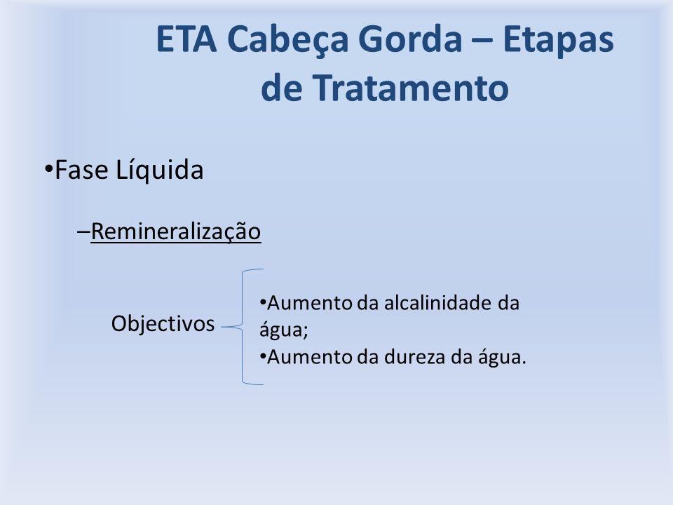 ETA Cabeça Gorda – Etapas de Tratamento Fase Líquida –Remineralização Objectivos Aumento da alcalinidade da água; Aumento da dureza da água.