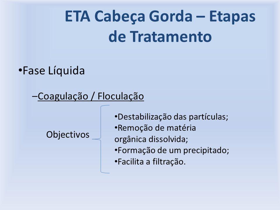ETA Cabeça Gorda – Etapas de Tratamento Fase Líquida –Coagulação / Floculação Objectivos Destabilização das partículas; Remoção de matéria orgânica dissolvida; Formação de um precipitado; Facilita a filtração.