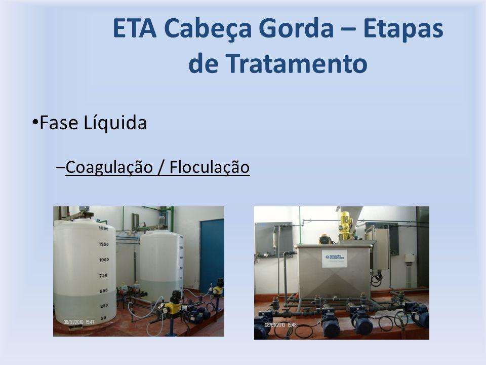 ETA Cabeça Gorda – Etapas de Tratamento Fase Líquida –Coagulação / Floculação