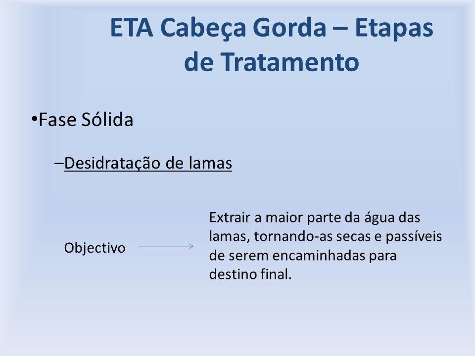 ETA Cabeça Gorda – Etapas de Tratamento Fase Sólida –Desidratação de lamas Objectivo Extrair a maior parte da água das lamas, tornando-as secas e passíveis de serem encaminhadas para destino final.