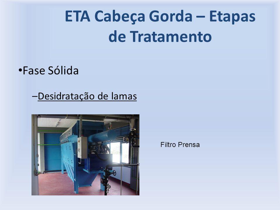 ETA Cabeça Gorda – Etapas de Tratamento Fase Sólida –Desidratação de lamas Filtro Prensa