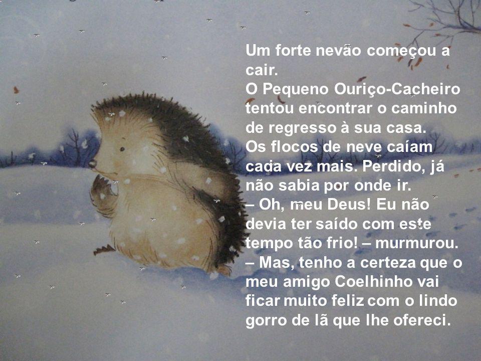 Um forte nevão começou a cair. O Pequeno Ouriço-Cacheiro tentou encontrar o caminho de regresso à sua casa. Os flocos de neve caíam cada vez mais. Per