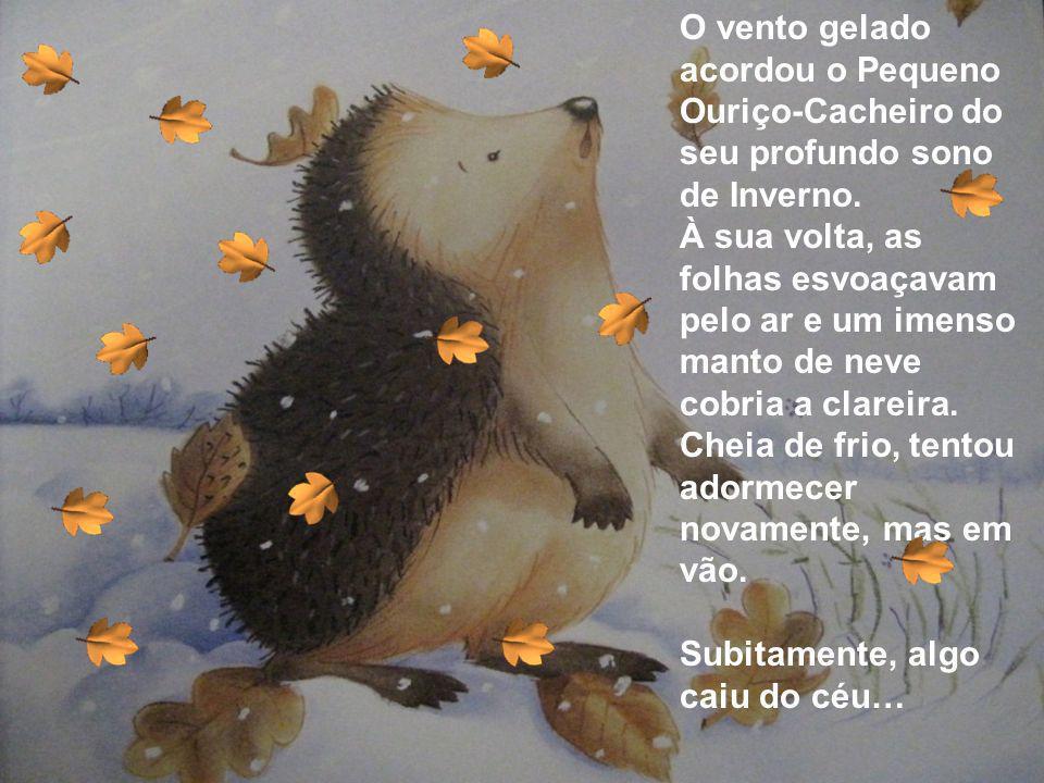 O vento gelado acordou o Pequeno Ouriço-Cacheiro do seu profundo sono de Inverno. À sua volta, as folhas esvoaçavam pelo ar e um imenso manto de neve