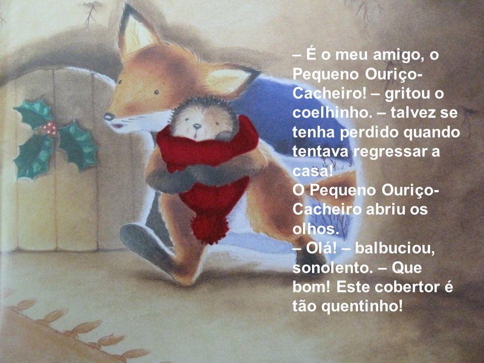 – É o meu amigo, o Pequeno Ouriço- Cacheiro! – gritou o coelhinho. – talvez se tenha perdido quando tentava regressar a casa! O Pequeno Ouriço- Cachei