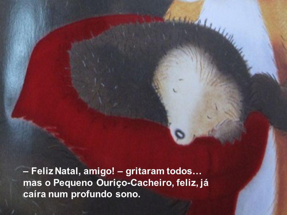 – Feliz Natal, amigo! – gritaram todos… mas o Pequeno Ouriço-Cacheiro, feliz, já caíra num profundo sono.