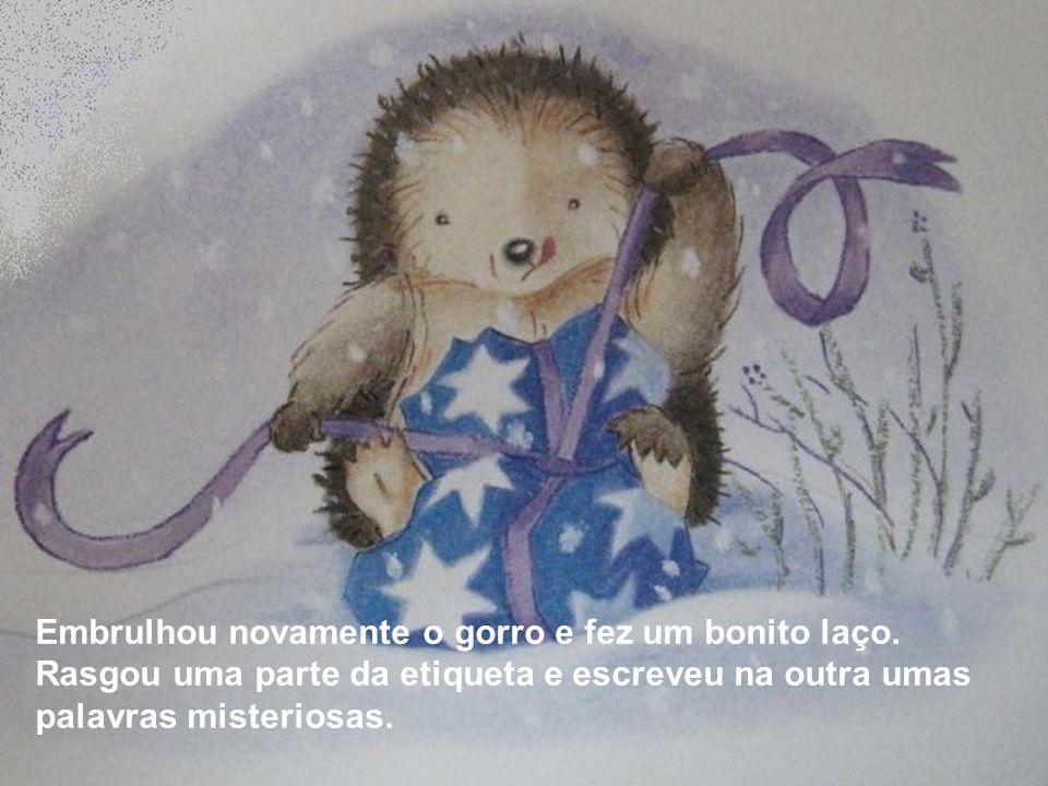 – É o meu amigo, o Pequeno Ouriço- Cacheiro.– gritou o coelhinho.