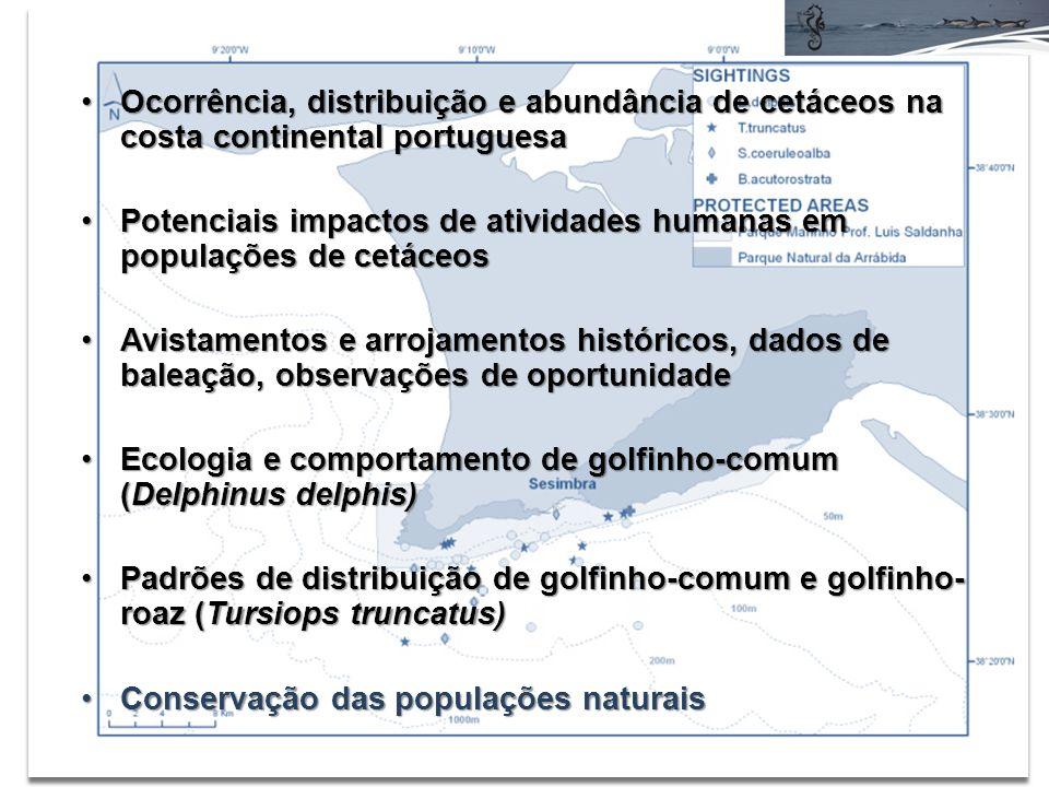 Ocorrência, distribuição e abundância de cetáceos na costa continental portuguesaOcorrência, distribuição e abundância de cetáceos na costa continental portuguesa Potenciais impactos de atividades humanas em populações de cetáceosPotenciais impactos de atividades humanas em populações de cetáceos Avistamentos e arrojamentos históricos, dados de baleação, observações de oportunidadeAvistamentos e arrojamentos históricos, dados de baleação, observações de oportunidade Ecologia e comportamento de golfinho-comum (Delphinus delphis)Ecologia e comportamento de golfinho-comum (Delphinus delphis) Padrões de distribuição de golfinho-comum e golfinho- roaz (Tursiops truncatus)Padrões de distribuição de golfinho-comum e golfinho- roaz (Tursiops truncatus) Conservação das populações naturaisConservação das populações naturais