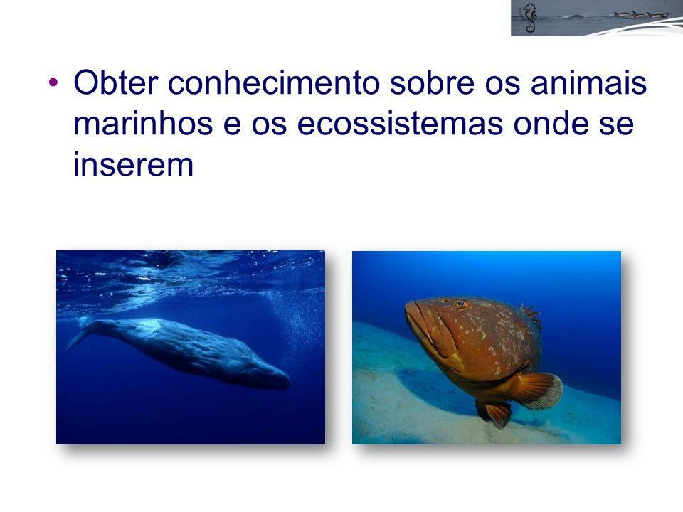 Obter conhecimento sobre os animais marinhos e os ecossistemas onde se inserem