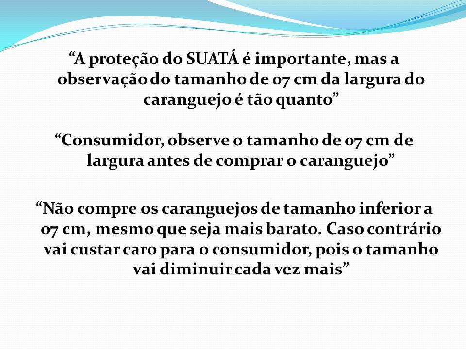 O cidadão que vive da pesca do caranguejo deve ser o primeiro a lutar pela conservação ambiental dos manguezais e dos caranguejos, pois paralisando du