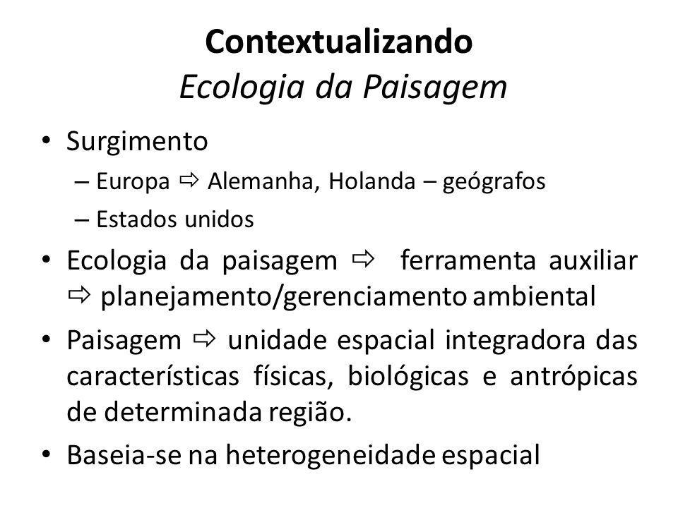 Contextualizando Ecologia da Paisagem Surgimento – Europa Alemanha, Holanda – geógrafos – Estados unidos Ecologia da paisagem ferramenta auxiliar plan