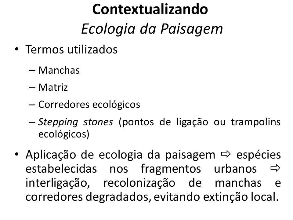 Termos utilizados – Manchas – Matriz – Corredores ecológicos – Stepping stones (pontos de ligação ou trampolins ecológicos) Aplicação de ecologia da p