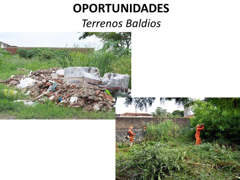 OPORTUNIDADES Terrenos Baldios