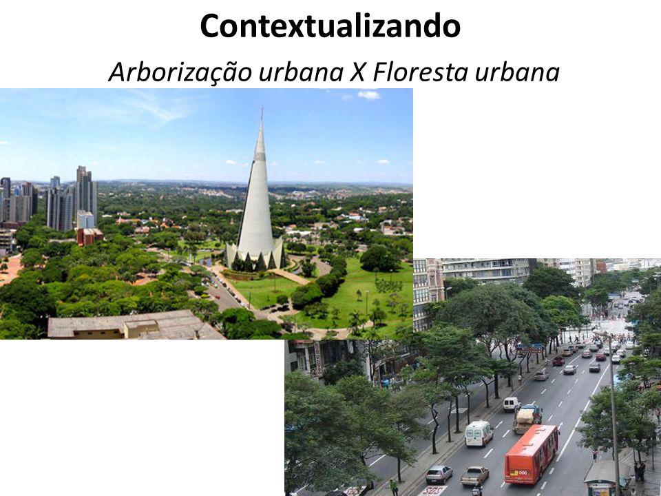 Arborização urbana – local de trabalho ruas, calçadas – árvores dispostas em linhas, enfileiradas e com espaçamento definido – Aspecto estético Conceito menor árvore é tratada de forma individual