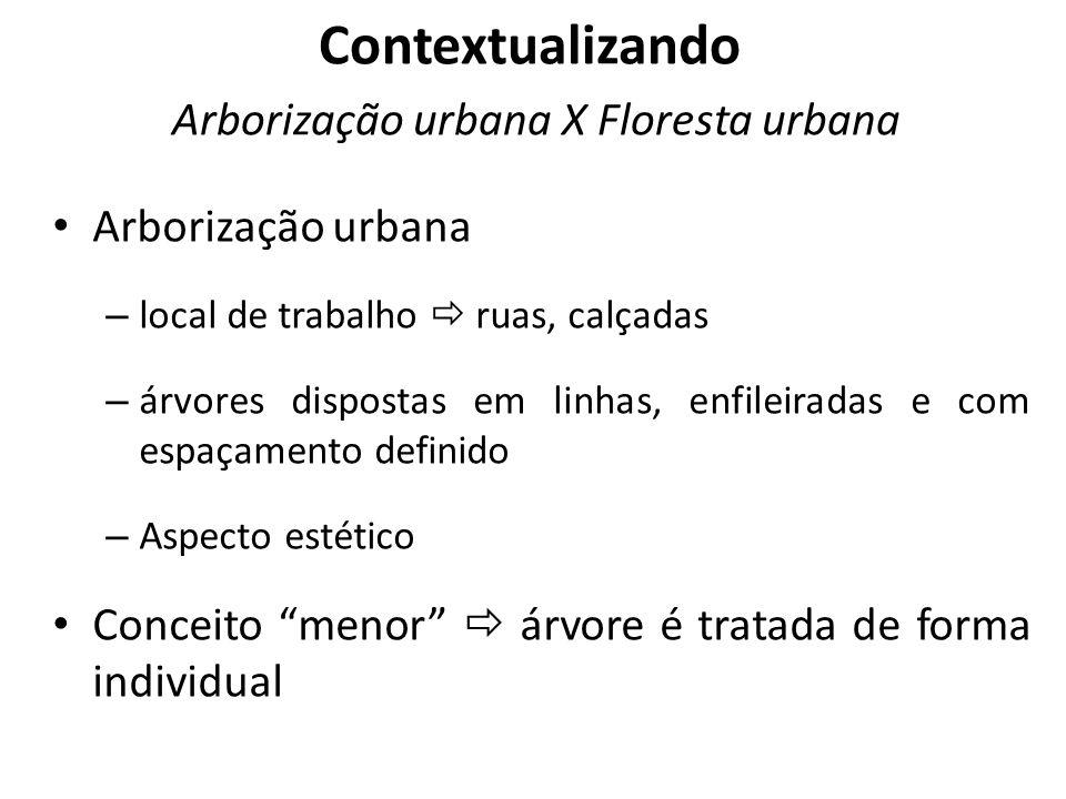 Arborização urbana – local de trabalho ruas, calçadas – árvores dispostas em linhas, enfileiradas e com espaçamento definido – Aspecto estético Concei