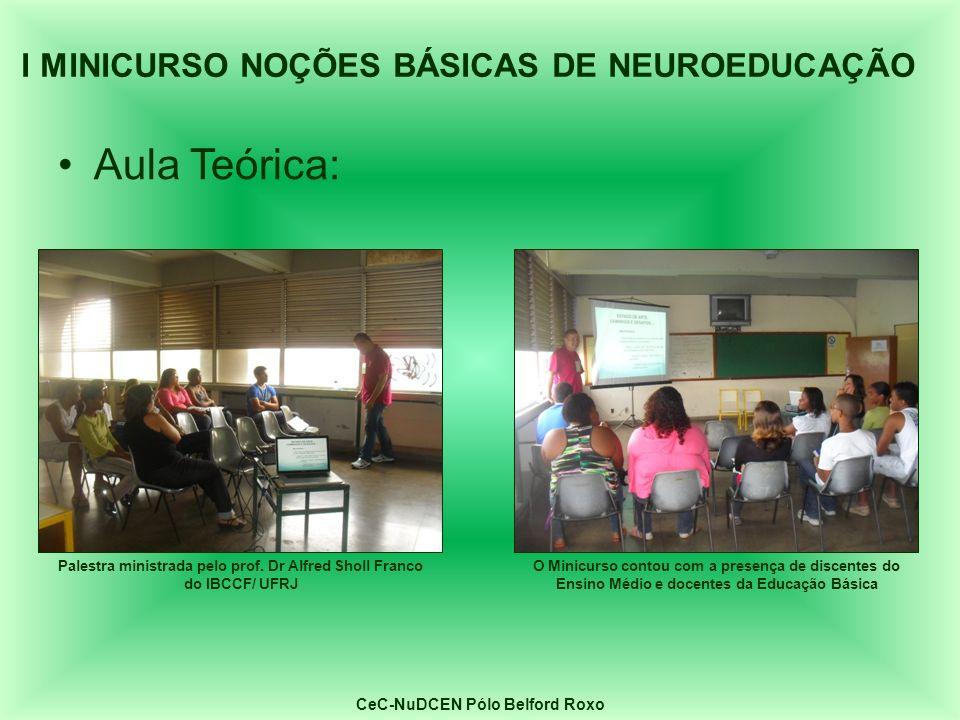 Aula Teórica: Palestra ministrada pelo prof. Dr Alfred Sholl Franco do IBCCF/ UFRJ O Minicurso contou com a presença de discentes do Ensino Médio e do