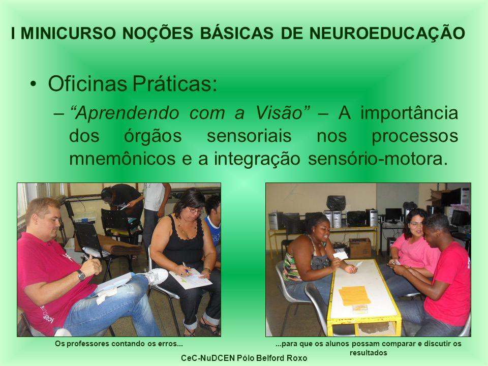 Oficinas Práticas: –Aprendendo com a Visão – A importância dos órgãos sensoriais nos processos mnemônicos e a integração sensório-motora. I MINICURSO