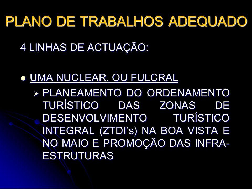 PLANO DE TRABALHOS ADEQUADO 4 LINHAS DE ACTUAÇÃO: UMA NUCLEAR, OU FULCRAL UMA NUCLEAR, OU FULCRAL PLANEAMENTO DO ORDENAMENTO TURÍSTICO DAS ZONAS DE DE