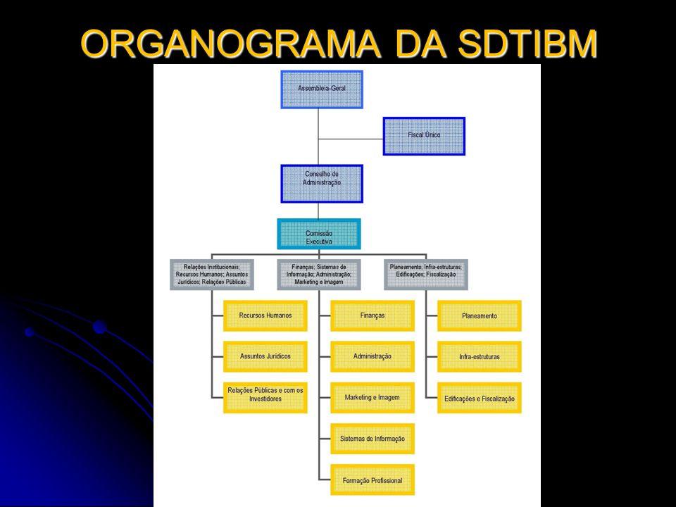 ORGANOGRAMA DA SDTIBM (Cont) É A ESTRUTURA LÓGICA OPERACIONAL DA EMPRESA É A ESTRUTURA LÓGICA OPERACIONAL DA EMPRESA AS CÉLULAS NÃO CORRESPONDEM NECESSARIAMENTE A POSTOS DE TRABALHO AS CÉLULAS NÃO CORRESPONDEM NECESSARIAMENTE A POSTOS DE TRABALHO NESTA FASE, SÃO FREQUENTES AS SITUAÇÕES DE ACUMULAÇÃO E MULTIDISCIPLINARIEDADE NESTA FASE, SÃO FREQUENTES AS SITUAÇÕES DE ACUMULAÇÃO E MULTIDISCIPLINARIEDADE