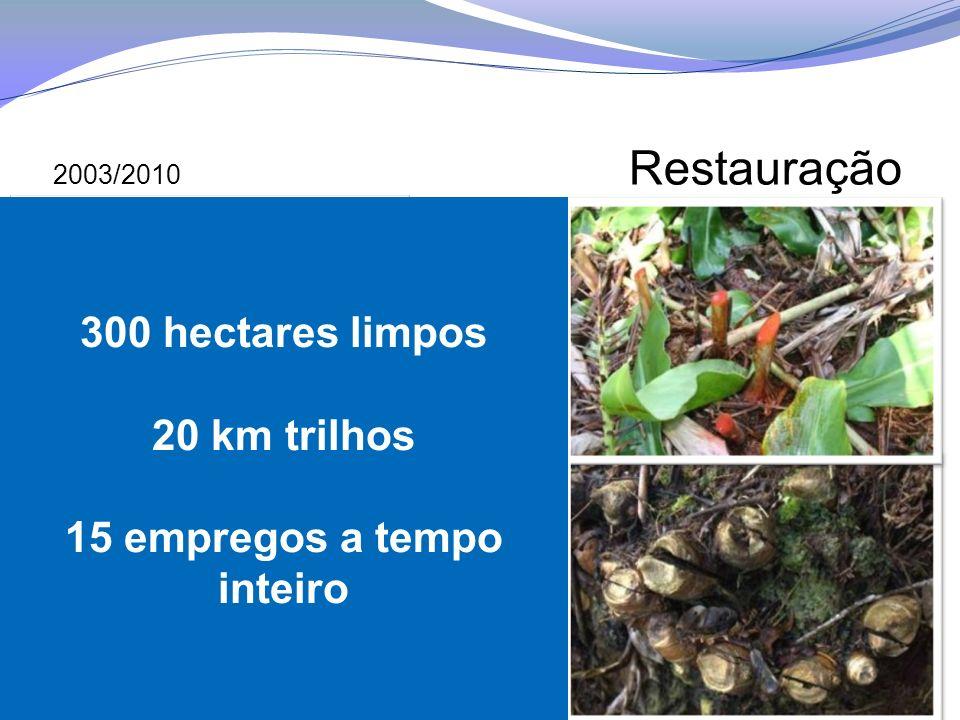 2003/2010 Restauração 300 hectares limpos 20 km trilhos 15 empregos a tempo inteiro