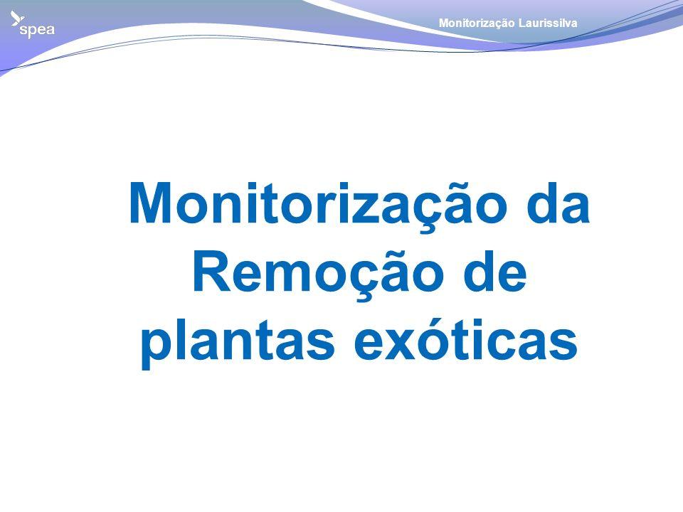 Monitorização da Remoção de plantas exóticas Monitorização Laurissilva
