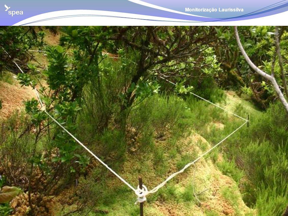 Metodologia Parcelas de 2x2m: Para controlar o efeito da remoção de especies exóticas na vegetação natural, foram estabelecidas parcelas de 2x2 m. Reg