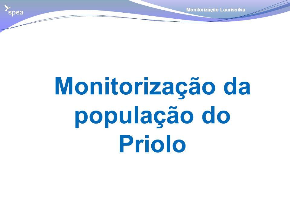 Monitorização da população do Priolo Monitorização Laurissilva
