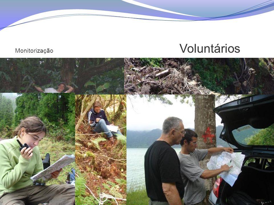 Monitorização Voluntários