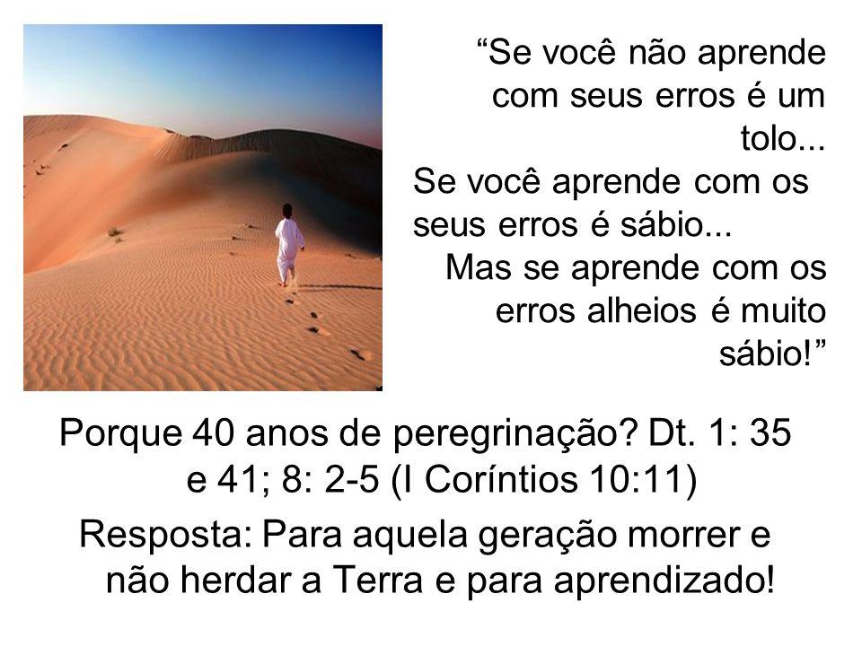Porque 40 anos de peregrinação? Dt. 1: 35 e 41; 8: 2-5 (I Coríntios 10:11) Resposta: Para aquela geração morrer e não herdar a Terra e para aprendizad