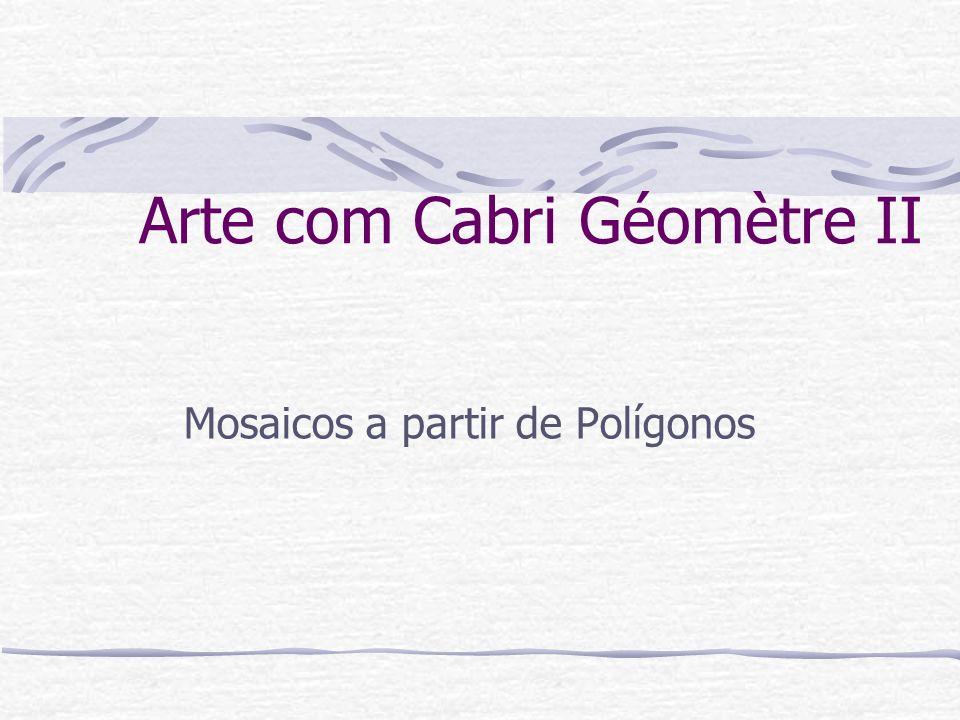 Utilizando as transformações isométricas e o Cabri Géomètre II, podemos construir mosaicos dos mais variados.