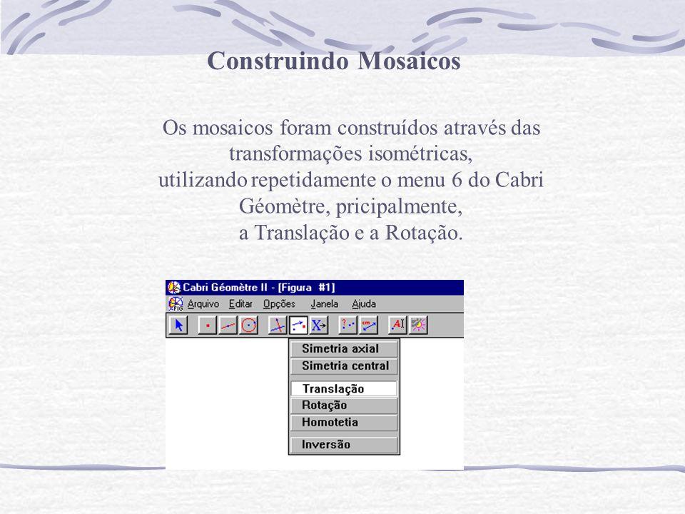 Os mosaicos foram construídos através das transformações isométricas, utilizando repetidamente o menu 6 do Cabri Géomètre, pricipalmente, a Translação