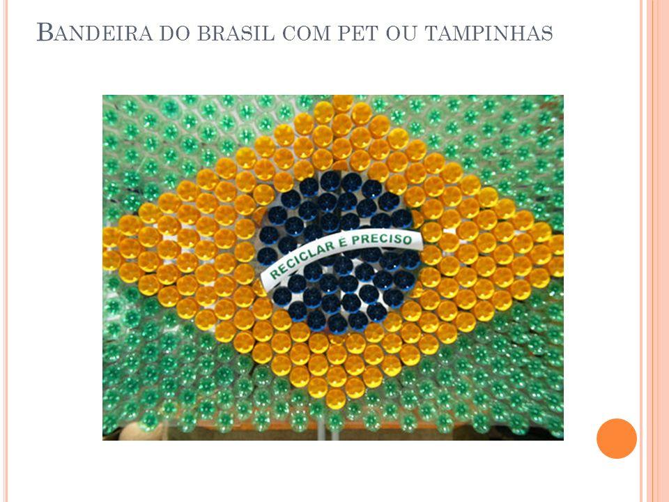 B ANDEIRA DO BRASIL COM PET OU TAMPINHAS