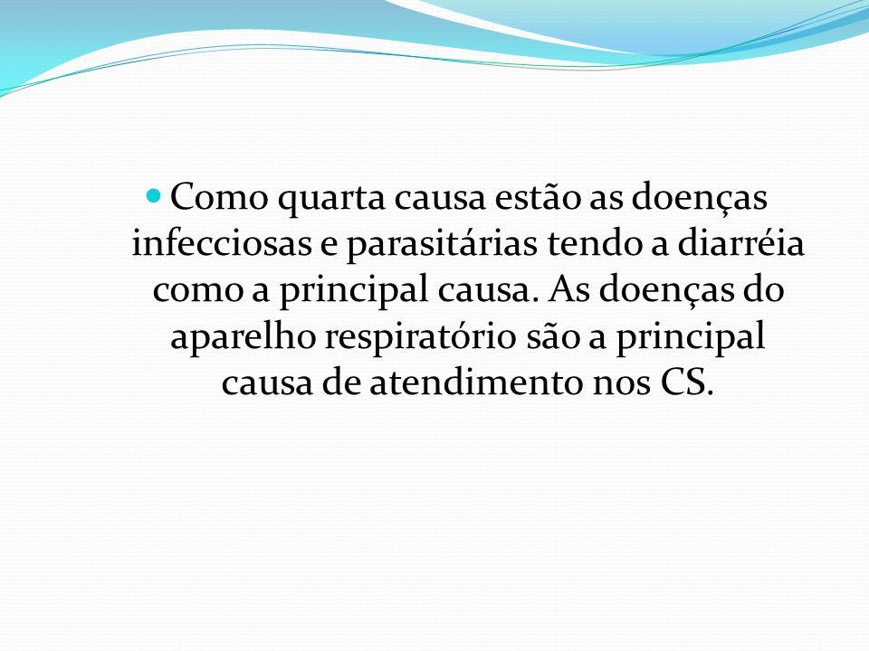 Como quarta causa estão as doenças infecciosas e parasitárias tendo a diarréia como a principal causa. As doenças do aparelho respiratório são a princ