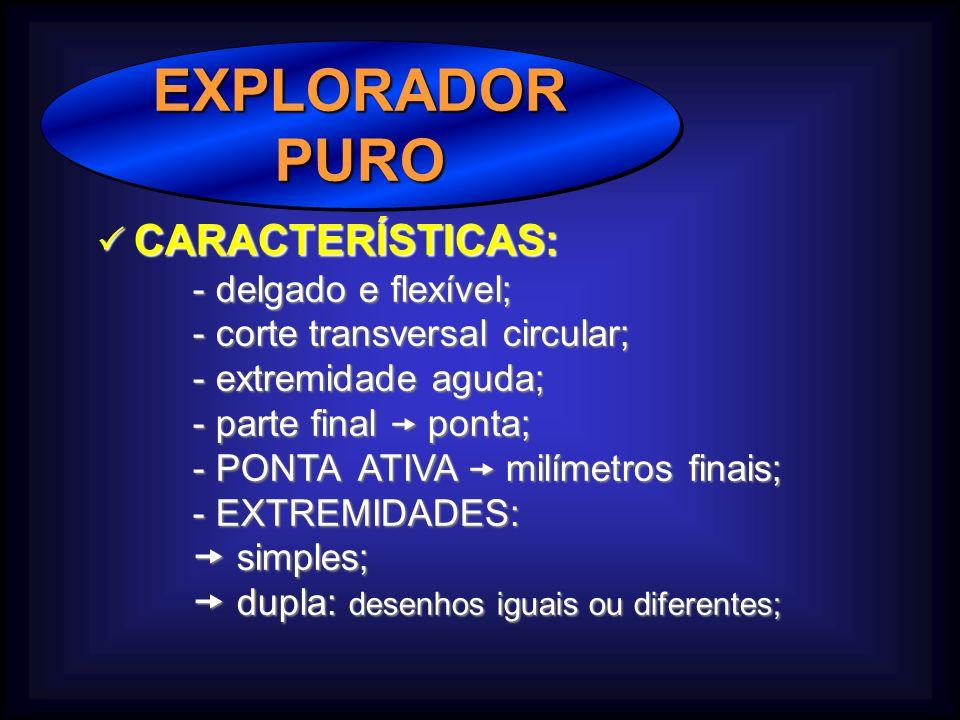 EXPLORADORPUROEXPLORADORPURO CARACTERÍSTICAS: CARACTERÍSTICAS: - delgado e flexível; - corte transversal circular; - extremidade aguda; - parte final