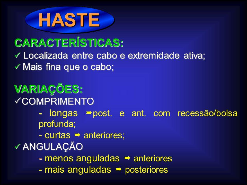 HASTE HASTE CARACTERÍSTICAS: Localizada entre cabo e extremidade ativa; Localizada entre cabo e extremidade ativa; Mais fina que o cabo; Mais fina que