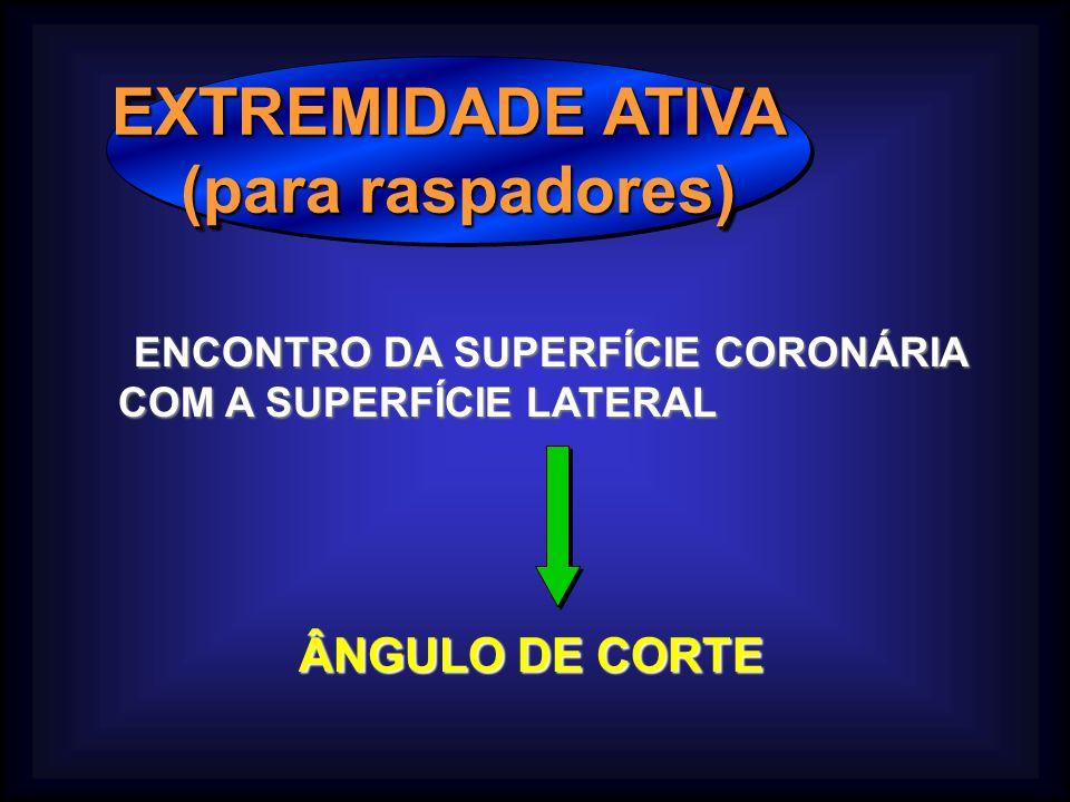 EXTREMIDADE ATIVA (para raspadores) EXTREMIDADE ATIVA (para raspadores) ENCONTRO DA SUPERFÍCIE CORONÁRIA ENCONTRO DA SUPERFÍCIE CORONÁRIA COM A SUPERFÍCIE LATERAL ÂNGULO DE CORTE ÂNGULO DE CORTE