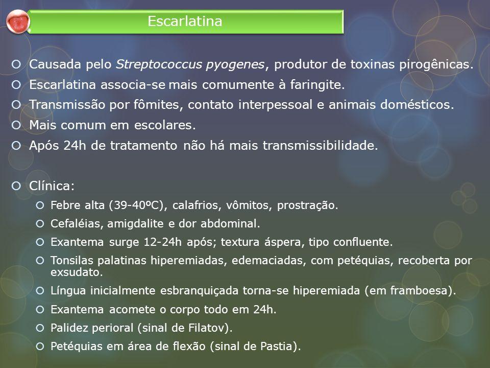 Causada pelo Streptococcus pyogenes, produtor de toxinas pirogênicas. Escarlatina associa-se mais comumente à faringite. Transmissão por fômites, cont