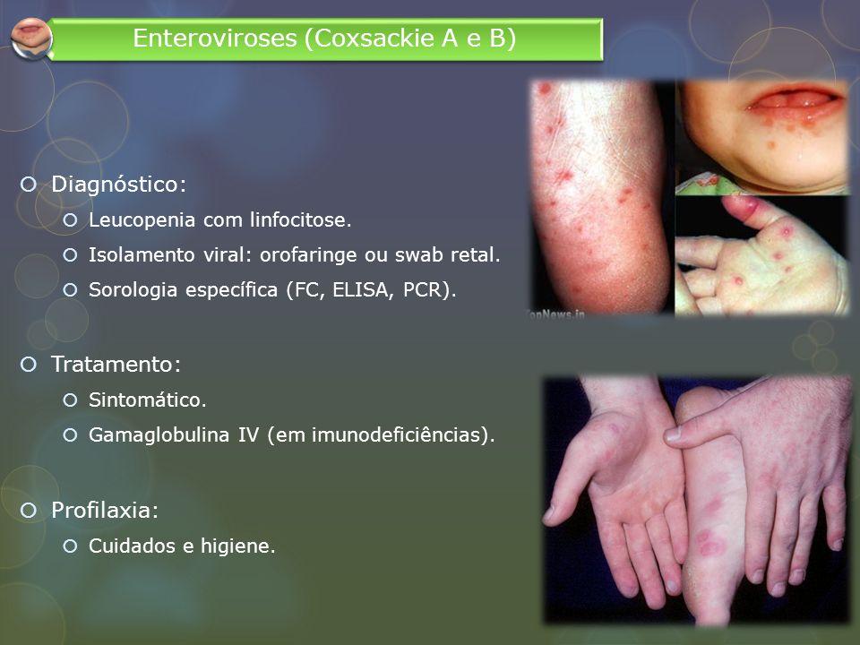 Diagnóstico: Leucopenia com linfocitose. Isolamento viral: orofaringe ou swab retal. Sorologia específica (FC, ELISA, PCR). Tratamento: Sintomático. G