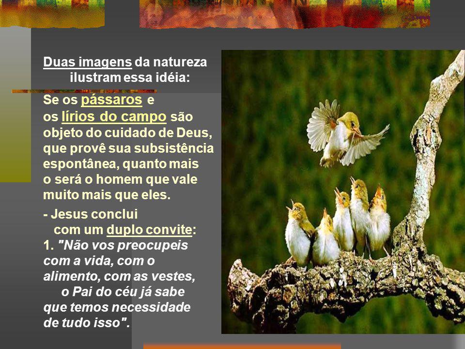 Duas imagens da natureza ilustram essa idéia: Se os pássaros e os lírios do campo são objeto do cuidado de Deus, que provê sua subsistência espontânea, quanto mais o será o homem que vale muito mais que eles.