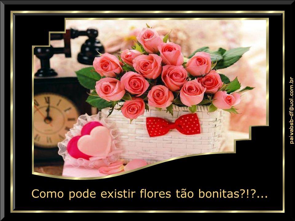 Como pode existir flores tão bonitas?!?...