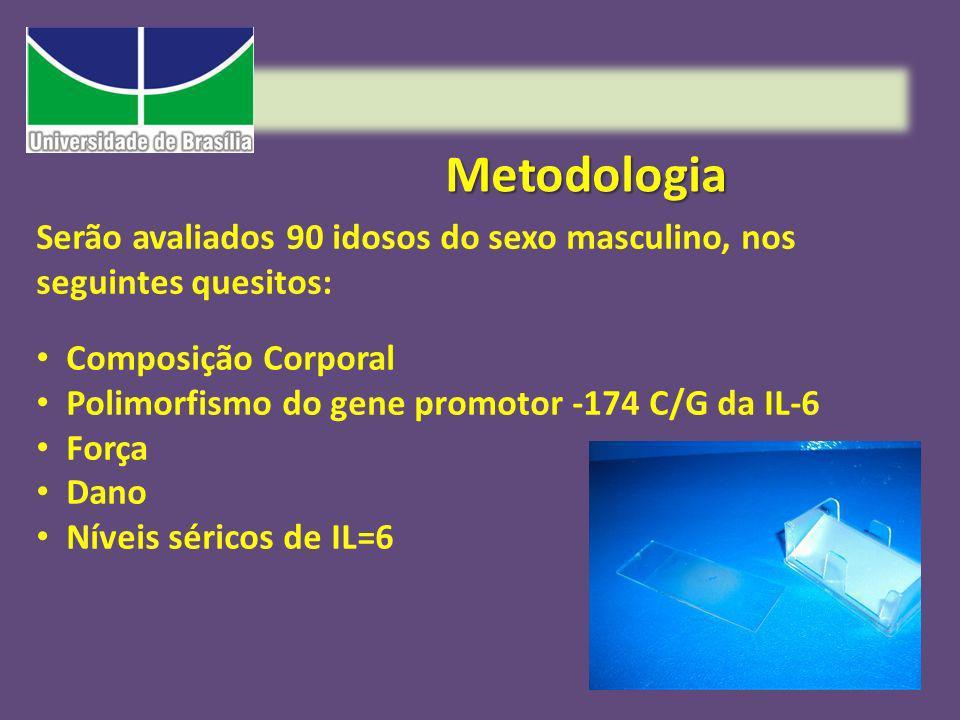 Metodologia Serão avaliados 90 idosos do sexo masculino, nos seguintes quesitos: Composição Corporal Polimorfismo do gene promotor -174 C/G da IL-6 Fo